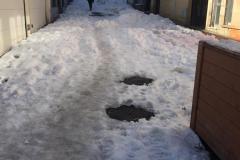 duende-temporal-nieve-3