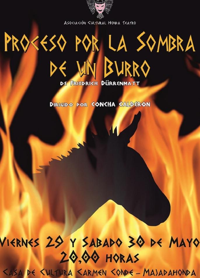 proceso sombra burro
