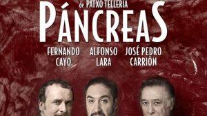 Pancreas-Patxo-Telleria-Carlos-Rubio_TINIMA20160202_0505_5