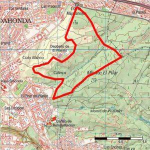 monte-del-pilar-ruta