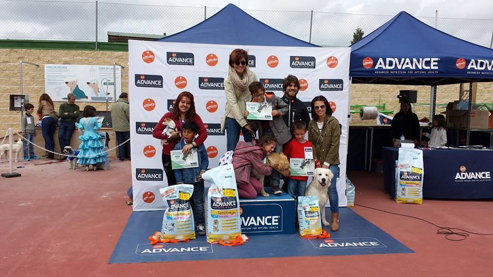 Xito del concurso canino de verdecora majadajonda las for Verdecora madrid
