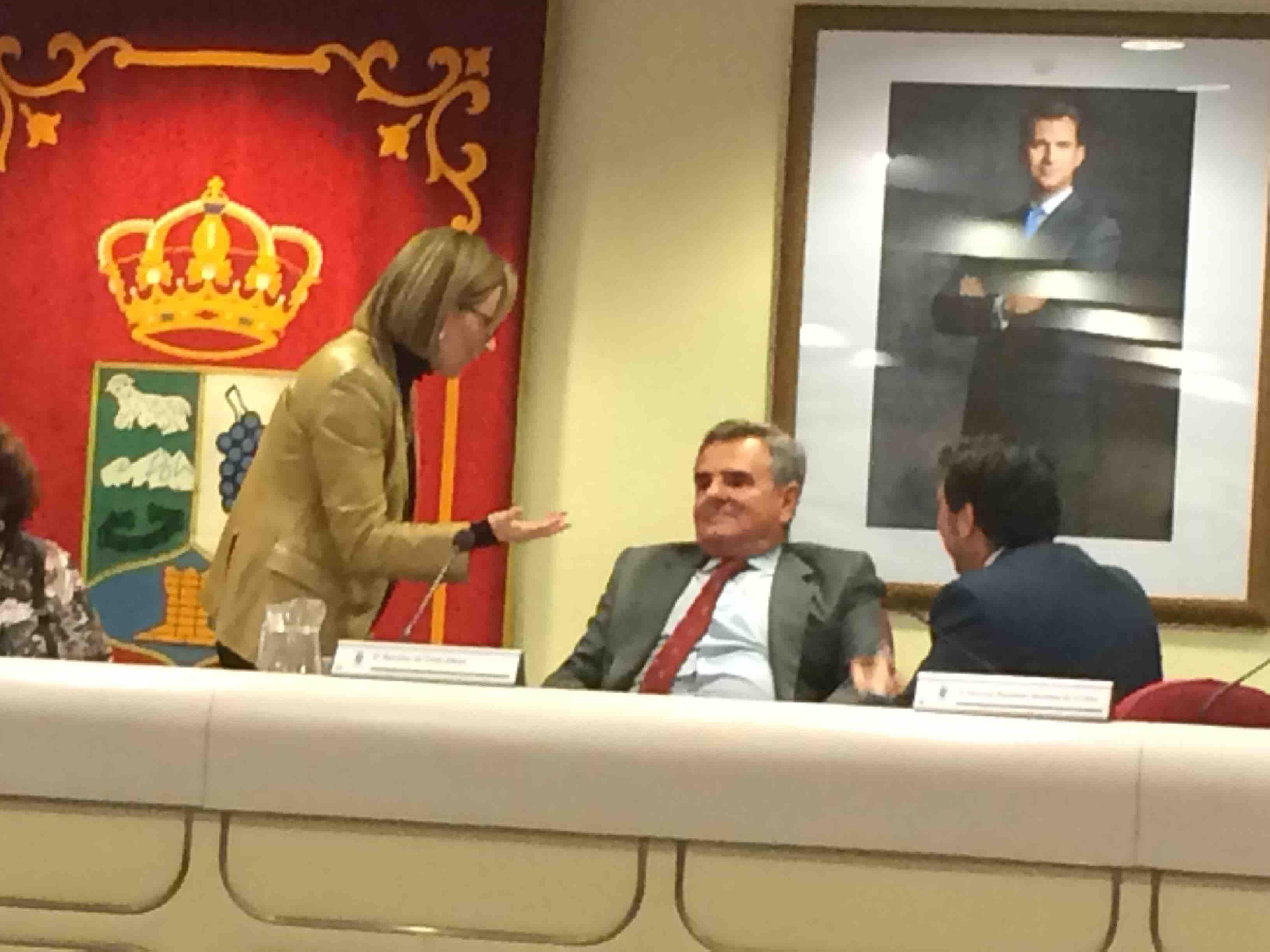 María José Montón (PP) durante el parón del pleno