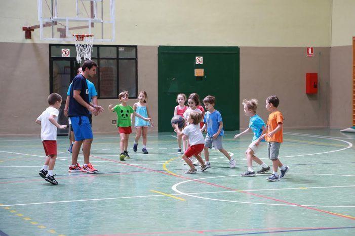 Campamentos de verano en el Colegio Pérez Galdós (Majadahonda): medio mes 150 €