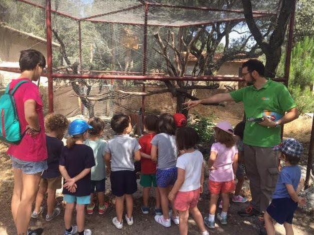 473 niños de Majadahonda concluyen los campamentos de verano municipales entre deporte y naturaleza