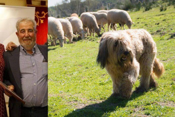 GREFA se suma al homenaje de Majadahonda al pastor Antonio Robledo pero pide que le ayuden más por la sequía