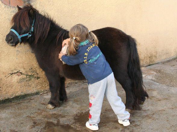 La psicóloga de Majadahonda Carla Valverde sugiere que los niños con autismo se relacionen con animales y mascotas