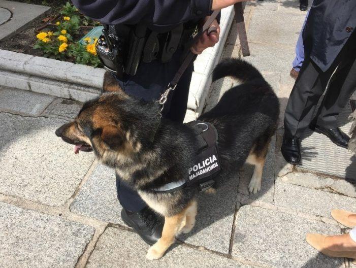 La patrulla canina de la Policía de Majadahonda que vigilará los colegios cuesta 4.705,88 €