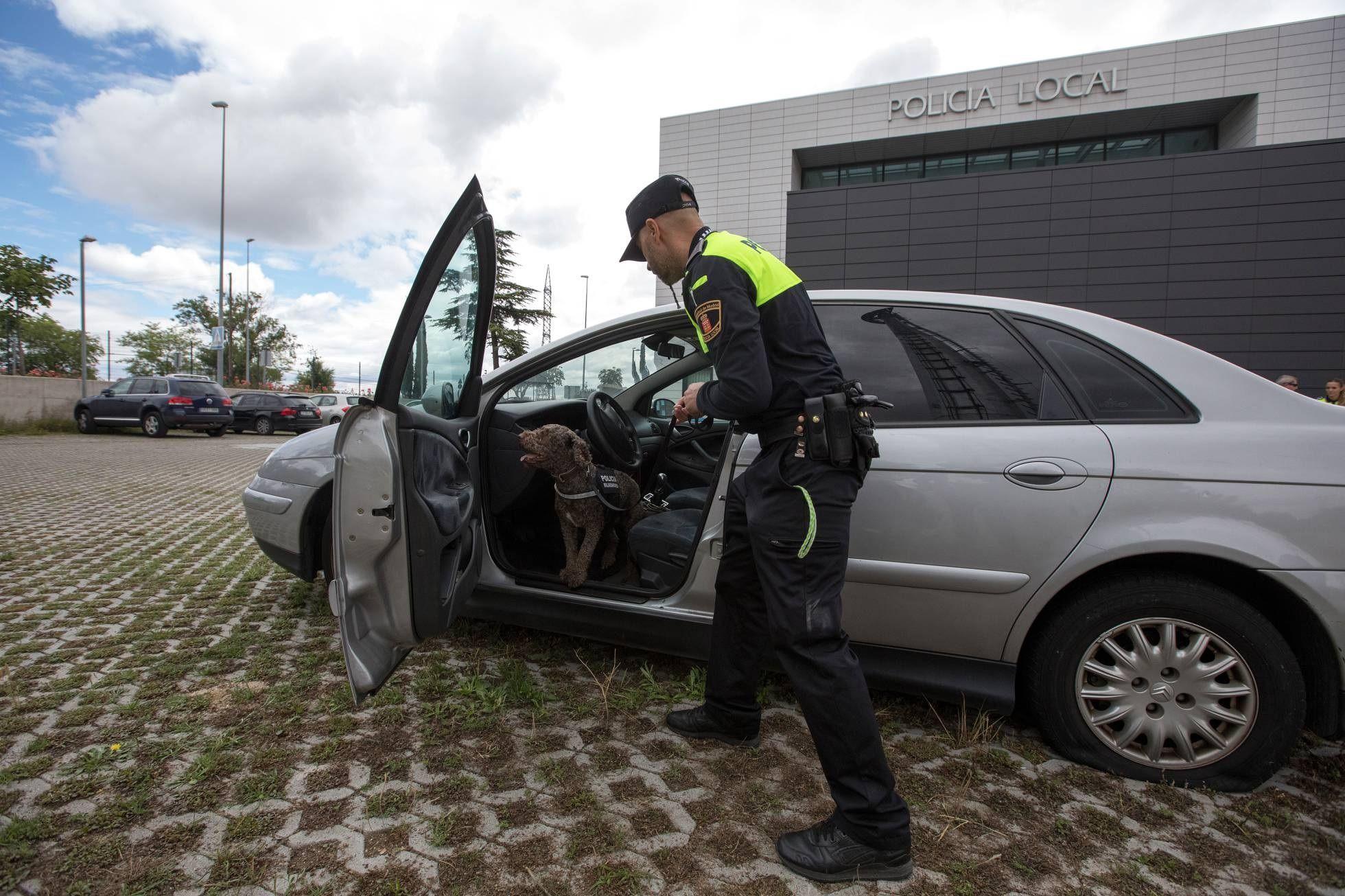 Protagonistas Majadahonda: Odie, Suha, Tuca y Dyngo (Policía Canina), abandono de mascotas, límites a las terrazas, talleres para mayores