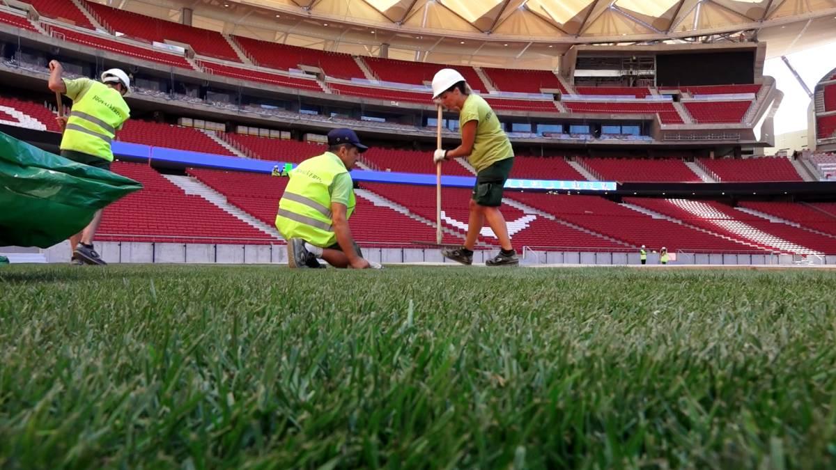 Prensa y aficionados critican al At. Madrid: creen que Rayo Majadahonda deteriora aún más el césped del Wanda