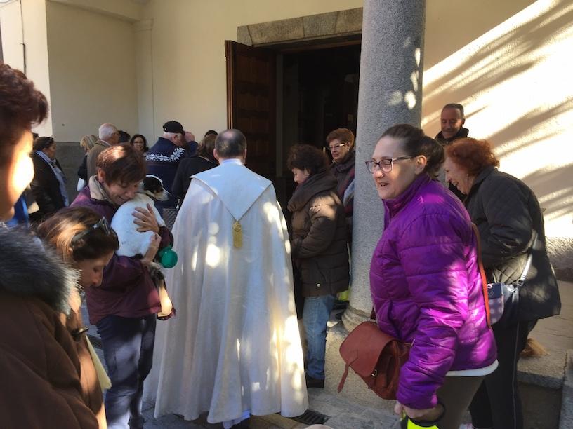 Religión Majadahonda: bendición de mascotas por S. Antón (Sta Catalina), desfibrilador en Sta Genoveva y mes de Don Bosco en las Salesianas