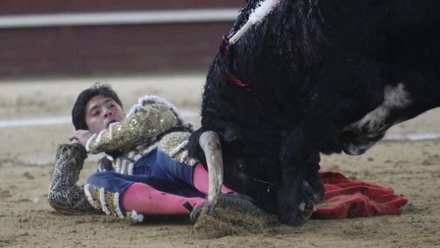 Toros Majadahonda: Rafael González sale de Puerta de Hierro con 2 cornadas de 27 cm y Santiago Espín en Cáceres