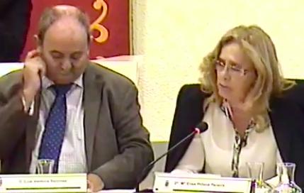 Las bases del PSOE Majadahonda apartan a los concejales Elisa Piñana y Luis Ventura