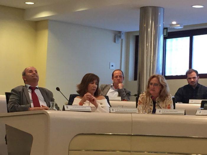 """Las """"perlas"""" del PSOE en el último pleno de Majadahonda: Luis Ventura confunde a Irene Salcedo con Irene Montero"""