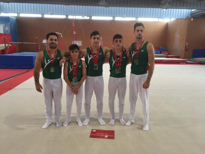 Gimnasia: Majadahonda se trae 5 oros y 2 platas del Campeonato de Madrid pero el femenino se queda sin ascenso