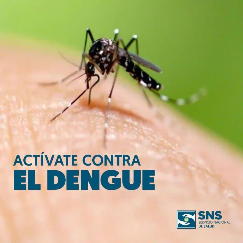 """El Instituto Carlos III (Majadahonda) advierte del peligro mortal de las nuevas garrapatas y """"mosquitos tigre"""""""