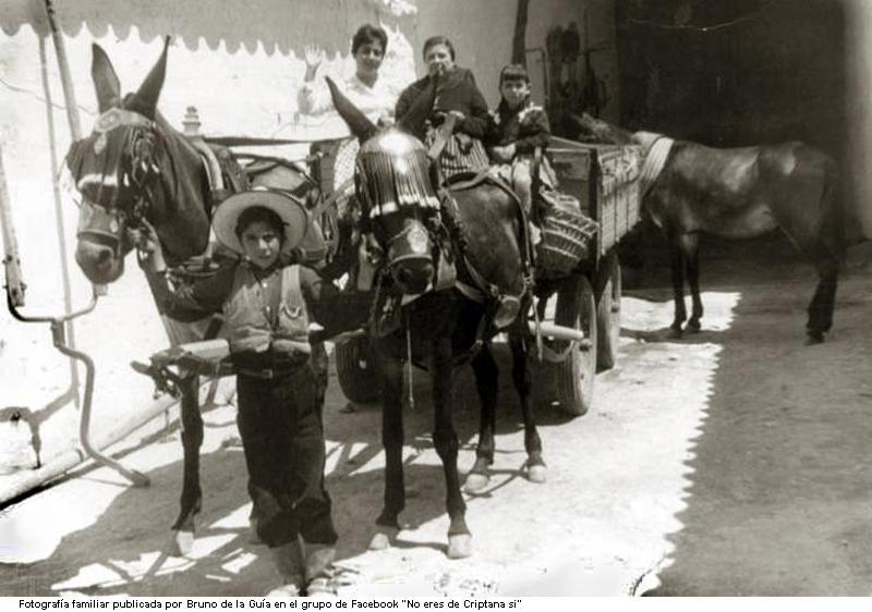 """""""Trabajando con 13 años como labrador y mulero: el instinto animal"""" (Majadahonda, 1907)"""