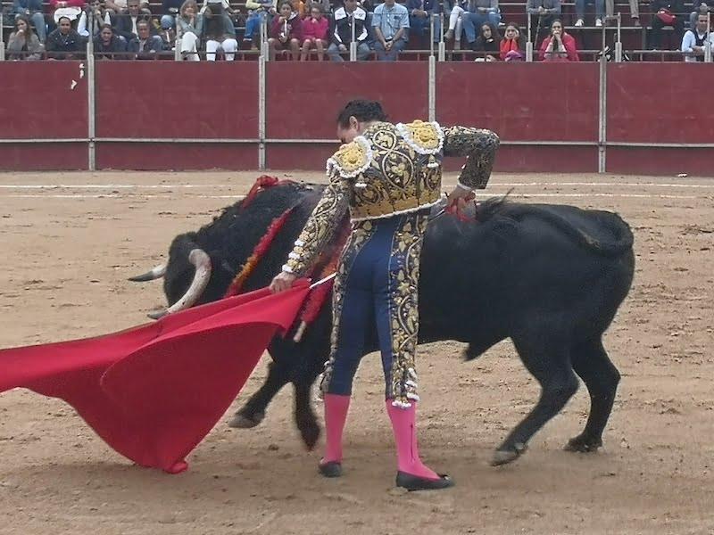 Los toros de las Fiestas de Majadahonda 2019 elegidos entre los 3 mejores de la ganadería de Guadalmena (Jaén)