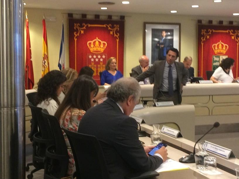 "Alonso (PP) da por ""resuelta"" la ""crisis de los jabalíes"" en Majadahonda: Cs la lleva a Madrid"
