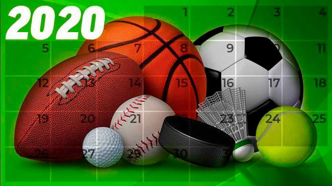 Noticias deportivas más leídas en Majadahonda: las 10 disciplinas con más seguidores