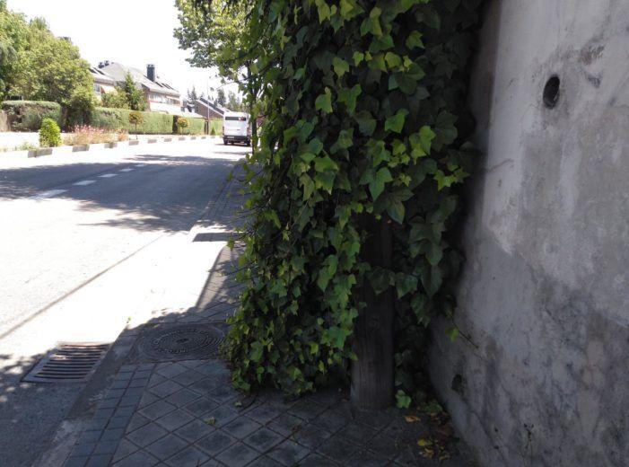"""El Duende Majariego: """"aceras para plantas y calzadas para coches en Majadahonda"""""""