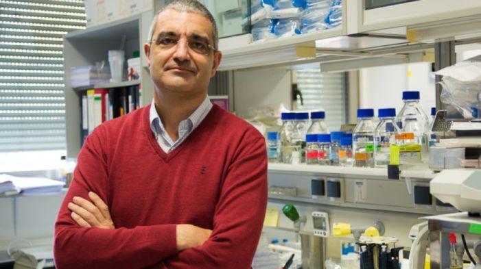 """Dr. Xosé Bustelo: """"La pandemia debe servir para que la economía se base más en el conocimiento que en el entretenimiento"""""""