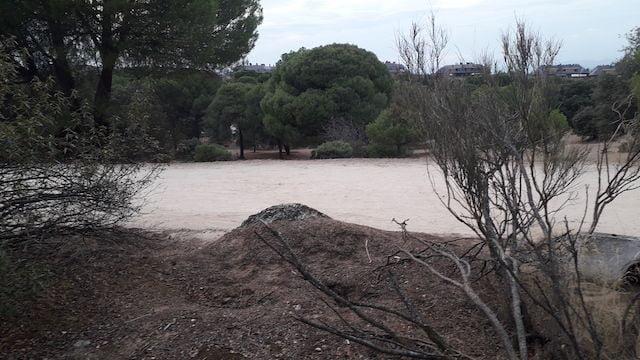 Un vecino encuentra posibles restos de la Guerra Civil en el Monte del Pilar de Majadahonda