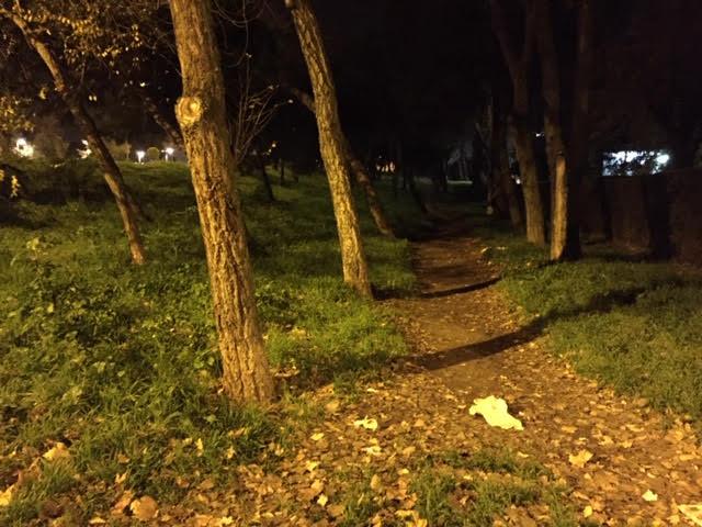 """""""La boca del lobo en el bosquecillo de la urbanización Las Mimbreras en Majadahonda"""""""
