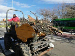 daños en árboles por valor de 14 millones