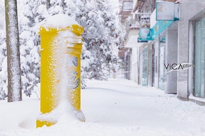 Se cumple un mes de la nevada: 50 imágenes de Majadahonda (Madrid) que nunca olvidaremos