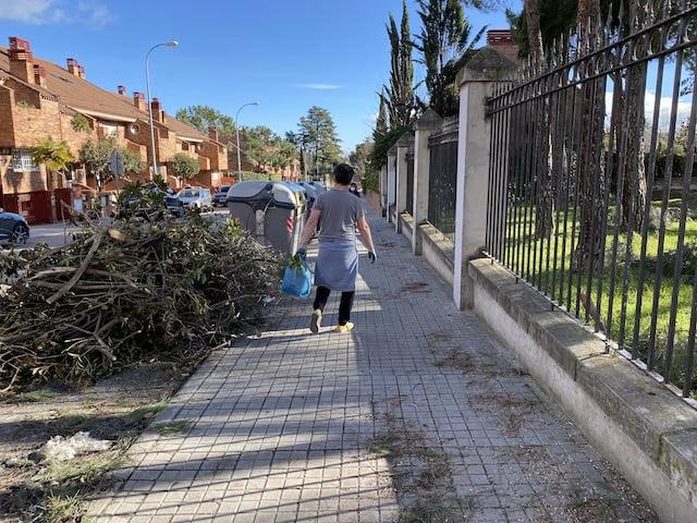 Los Ayuntamientos de PP-Vox en Majadahonda, Las Rozas y El Plantío (Madrid) siguen sin recoger ramas caídas
